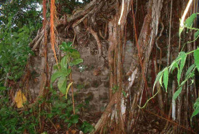 Remains of Ende fort, Ende Island, Indonesia. Author and Copyright Mark Schellekens and Greg Wyncoll