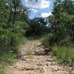 The road in was 40km's of this then 5km's of walking through the bush as the only paths visible were ones used by the illegal gold panners. Maramuca, Zimbabwe. Photo © by Chris Dunbar