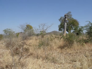 Angwa Fort (6) left of centre mound. Author and Copyright Chris Dunbar