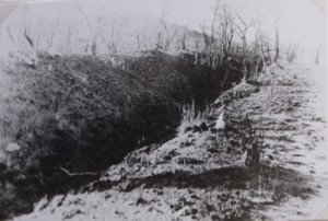 Fig 2. Outside View. Vallum and Ditch looking towards N - E Corner, Angwa Fort 3, Zimbabwe
