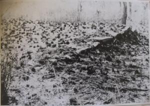 Fig. 5. Squared Bastion at N.- W. corner, from North side, Angwa Fort 4, Angwa, Zimbabwe