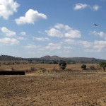 Location of Earthwork 1 in the distance. Dambarare, Zimbabwe. Author and Copyright Chris Dunbar