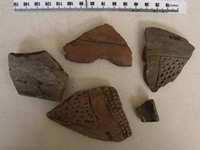 Native pottery collected from the site . Makaha, Zimbabwe. Photo © by Chris Dunbar
