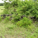 Native sections of the walls that have survived. Luanze, Zimbabwe. Author and Copyright Chris Dunbar,