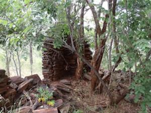 Ruins of the early settlers house Makaha, Zimbabwe. Photo © by Chris Dunbar