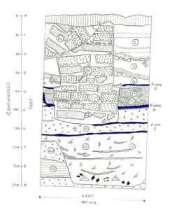 Trench AA looking South, Figure 5. 270 Degree View