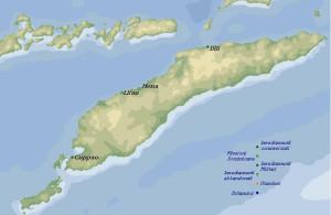 Karte der portugiesischen Handels- und Militär-Stützpunkte und der Missionsstationen der Dominikaner auf Timor um 1650