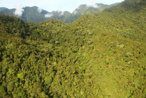 Mount Bosavi, Papua Nuova Guinea. Author Panvorax. Licensed under the Creative Commons Attribution.