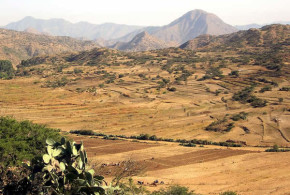 Tra Asmara e Decamerè, Eritrea. Author David Stanley. Licensed under the Creative Commons Attribution